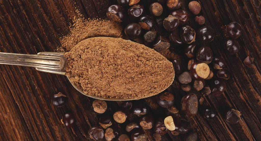 Guarana als Pulver und als Samen
