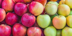 Schweizer Nationalfrucht: So viel Gutes steckt im Apfel